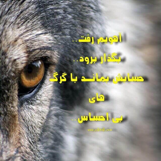 پروفایل تلگرام خردادی عکس نوشته گرگ همراه با متن برای پروفایل تلگرام و ...