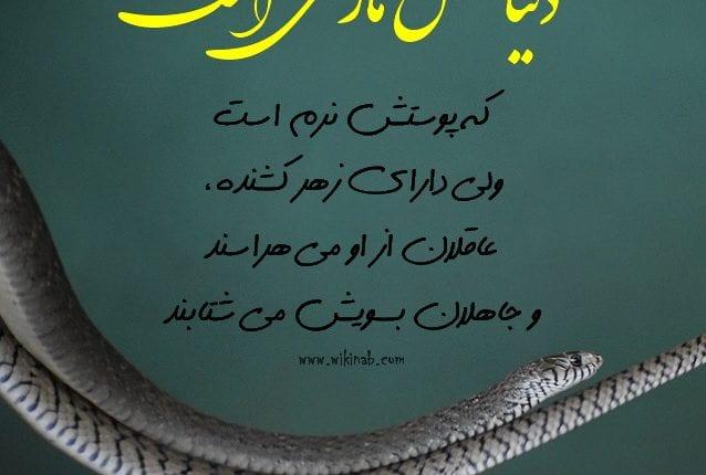 emam-ali14
