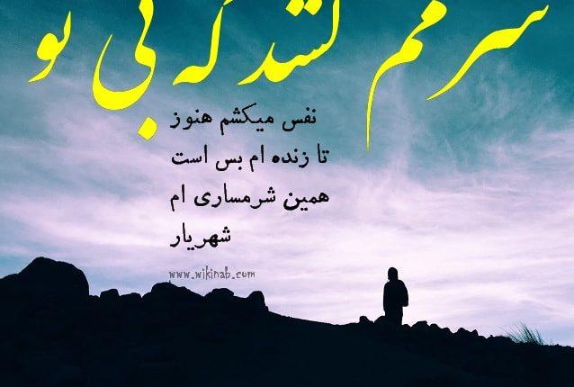 shahriar17