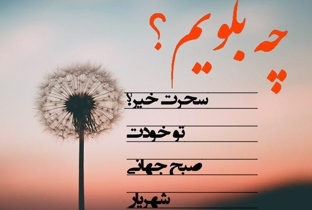 shahriar8